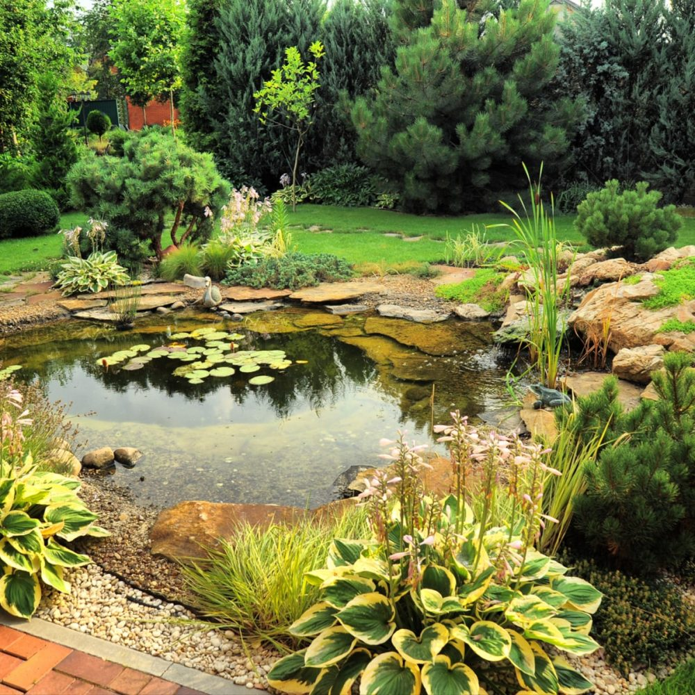 Meer doen met jouw tuin!