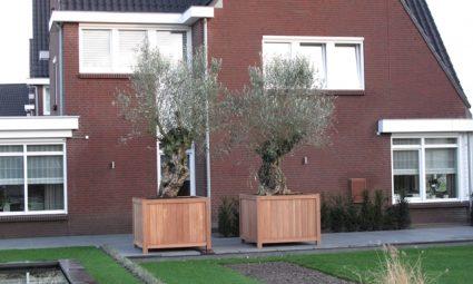 4 tips voor een houten plantenbak in de tuin