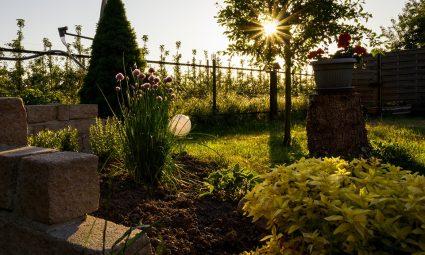 Hoe belangrijk is de ligging van de tuin voor het tuinontwerp?
